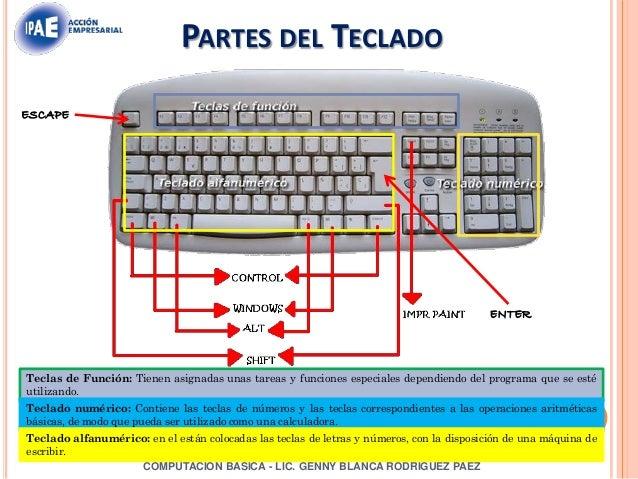 Manual de-computacion-basica.
