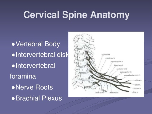 Cervical Radiculopathy Power Point.ppt
