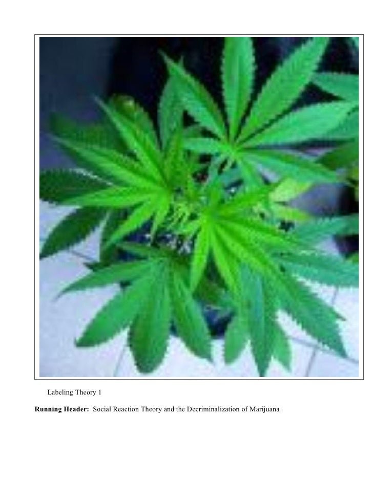 Labeling Theory 1  Running Header: Social Reaction Theory and the Decriminalization of Marijuana