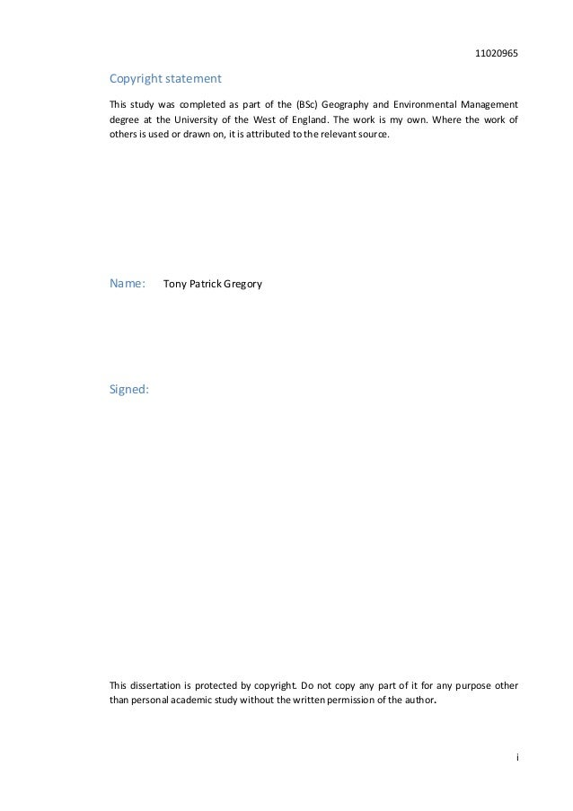 Bsc geography dissertation