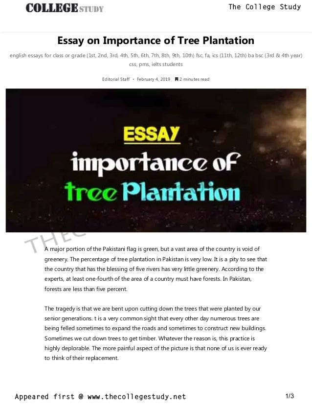 Topics For Argumentative Essays For High School  Abraham Lincoln Essay Paper also Essays On Health  Essay On Importance Of Tree Plantation The College Study Paper Essay Writing