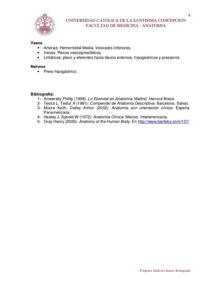 36. documento vejiga, uretra y próstata