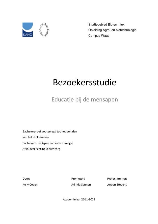 thesis educatie & advies b.v