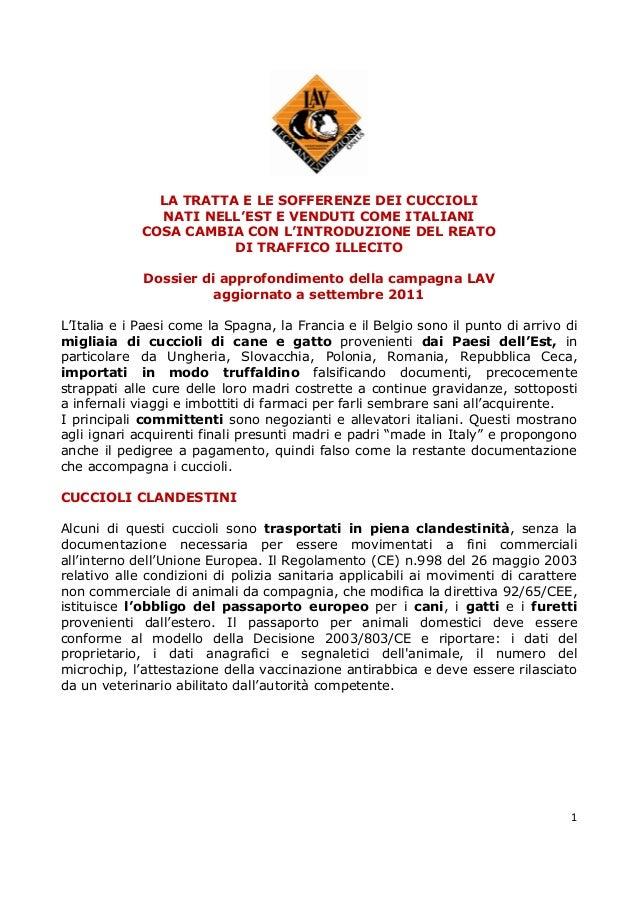 1LA TRATTA E LE SOFFERENZE DEI CUCCIOLINATI NELL'EST E VENDUTI COME ITALIANICOSA CAMBIA CON L'INTRODUZIONE DEL REATODI TRA...