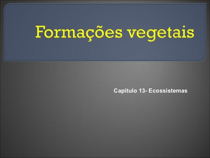Capítulo 13- Ecossistemas