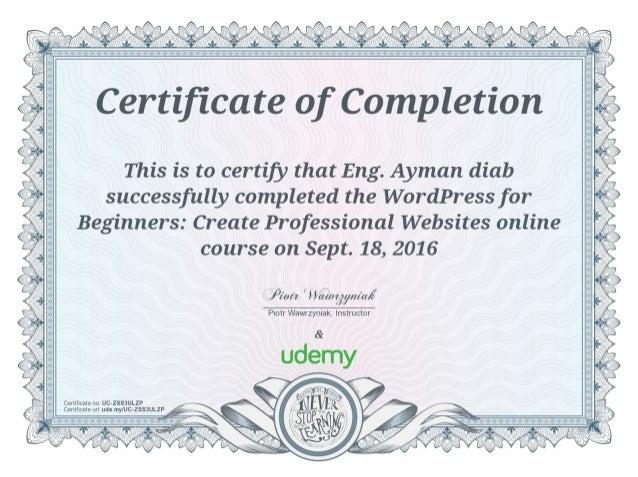 WordPress for Beginners Create Professional Websites