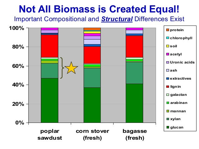Biotechnological Routes to Biomass Conversion