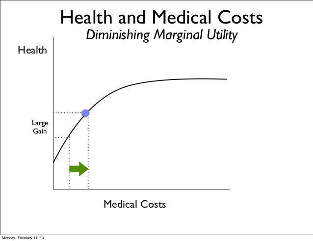 Health and Medical Costs                             Diminishing Marginal Utility        Health                Large      ...
