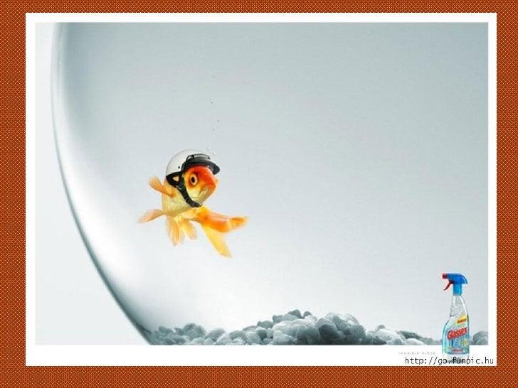 36+Funniest+Marketing+Ads Slide 5
