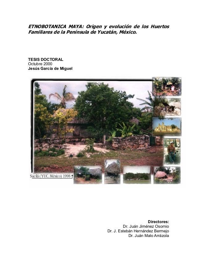 ETNOBOTANICA MAYA: Origen y evolución de los HuertosFamiliares de la Península de Yucatán, México.TESIS DOCTORALOctubre 20...