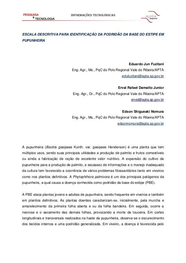 ESCALA DESCRITIVA PARA IDENTIFICAÇÃO DA PODRIDÃO DA BASE DO ESTIPE EM PUPUNHEIRA  Eduardo Jun Fuzitani Eng. Agr., Ms., PqC...