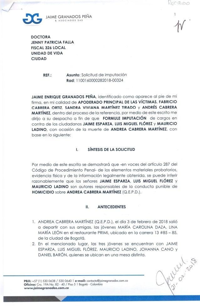 Escrito de imputación de cargos caso muerte de Andrea Cabrera Martinez