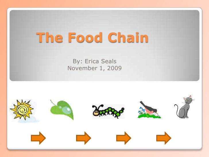 The Food Chain<br />By: Erica Seals<br />November 1, 2009<br />