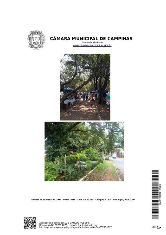 SOS Barão árvores-prot vereador Rossini Slide 2