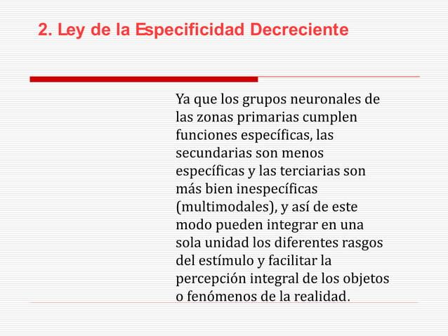 3.- Ley de la Lateralización Progresiva Se refiere a la progresiva diferencia funcional que se establece desde las zonas p...