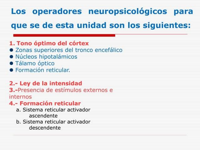 Los operadores neuropsicológicos para que se de esta unidad son los siguientes: 1. Tono óptimo del córtex Zonas superiores...