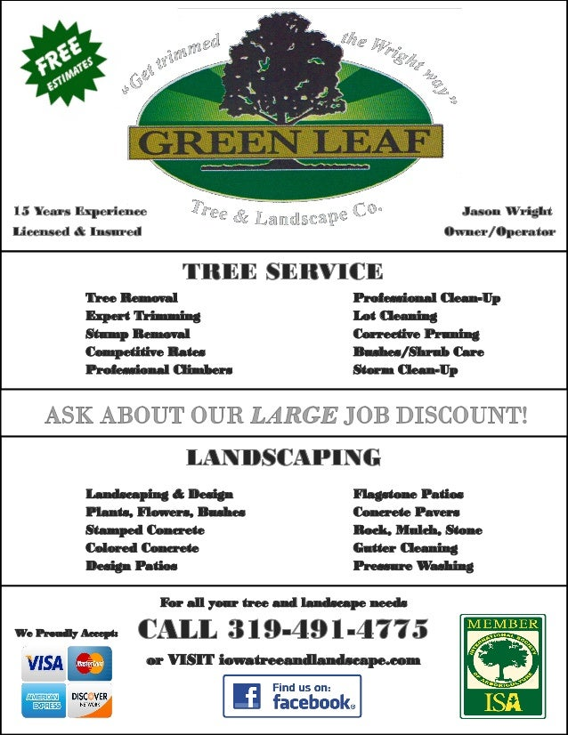 green leaf flyer completed tree removal expert trimming stump removal competitive rates professional climbers professional clean up lot cleaning