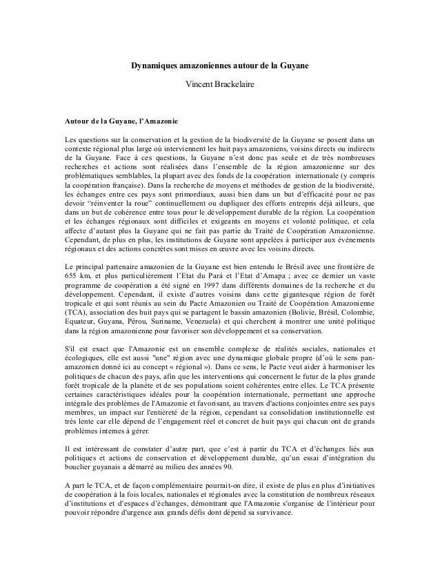 Dynamiques amazoniennes autour de la Guyane Vincent Brackelaire Autour de la Guyane, l'Amazonie Les questions sur la conse...
