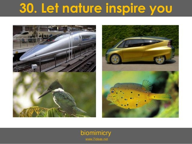 30. Let nature inspire you biomimicry www.7ideas.net