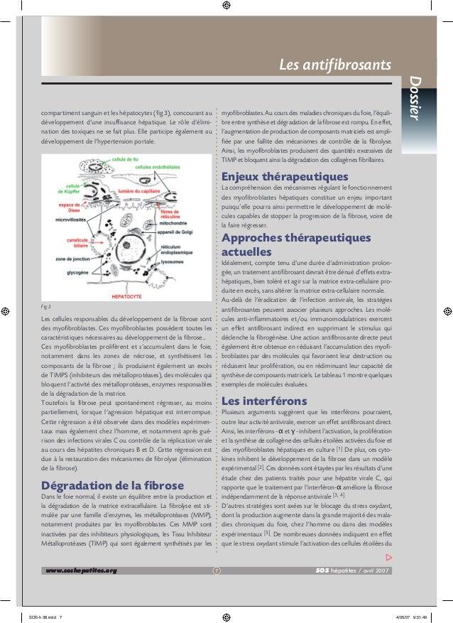 Les antifibrosants myofibroblastes. Au cours des maladies chroniques du foie, l'équilibre entre synthèse et dégradation de...