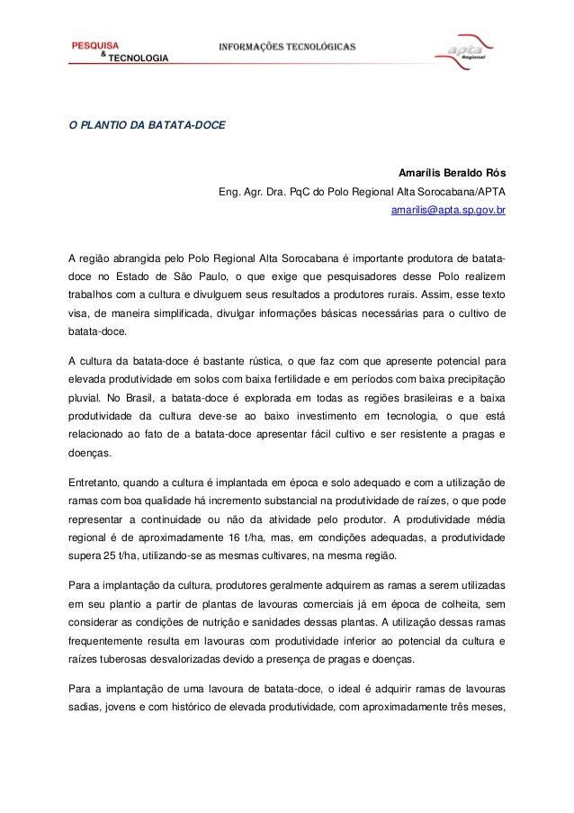O PLANTIO DA BATATA-DOCE  Amarílis Beraldo Rós  Eng. Agr. Dra. PqC do Polo Regional Alta Sorocabana/APTA  amarilis@apta.sp...