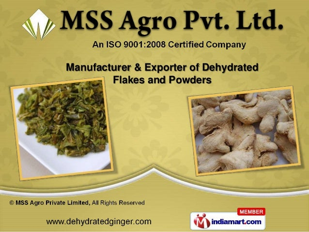 Manufacturer & Exporter of Dehydrated        Flakes and Powders