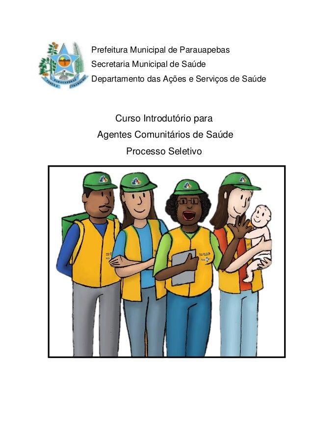 Prefeitura Municipal de Parauapebas Secretaria Municipal de Saúde Departamento das Ações e Serviços de Saúde Curso Introdu...