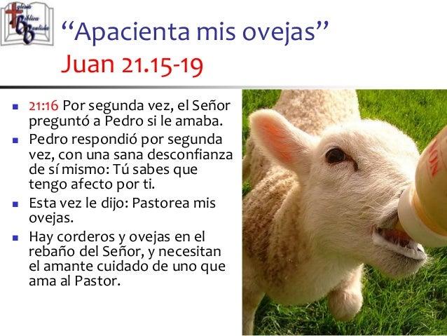 Resultado de imagen para Juan 21,15-19