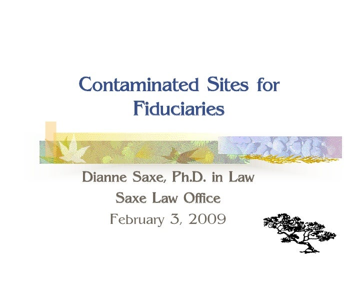 Contaminated Sites for      Fiduciaries   Dianne Saxe, Ph.D. in Law      Saxe Law Office     February 3, 2009