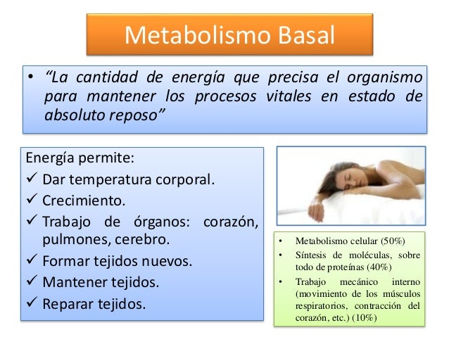 Vivir con metabolismo biologia