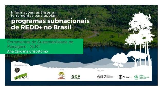 Ferramentas de Sustentabilidade de Paisagens - SLRT Ana Carolina Crisostomo
