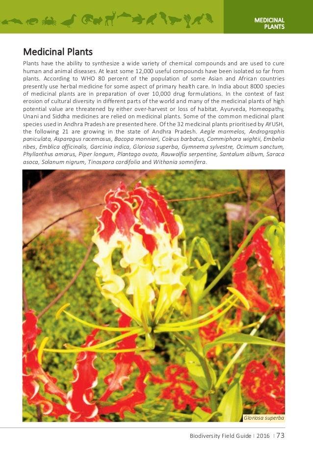 A.P.Biodiversity Field Guide