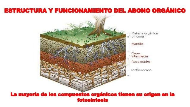 34 estructura y funcionamiento del abono orgnico - Abono Organico