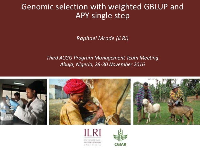 Genomic selection with weighted GBLUP and APY single step Raphael Mrode (ILRI) Third ACGG Program Management Team Meeting ...