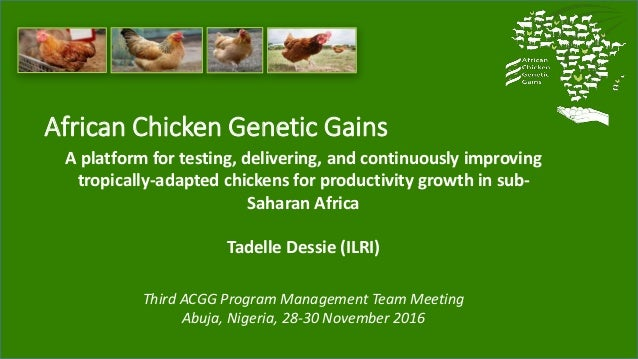 African Chicken Genetic Gains A platform for testing, delivering, and continuously improving tropically-adapted chickens f...