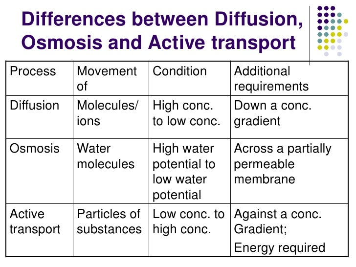 Chapter 3 Movement of Substances Lesson 3 - Active transport and the …