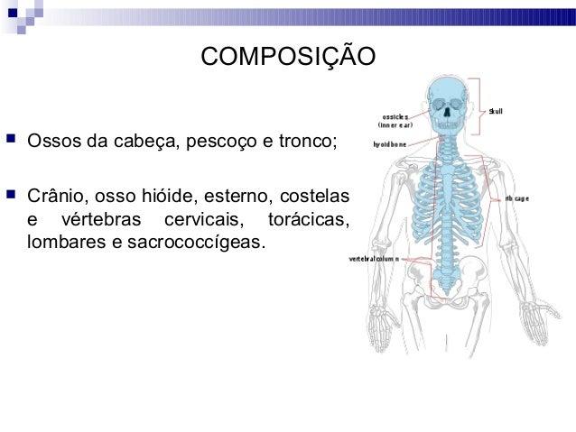 3) anatomia (esqueleto axial 1)