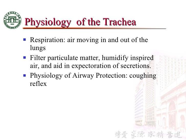 3 anatomy & physiology of esophagus