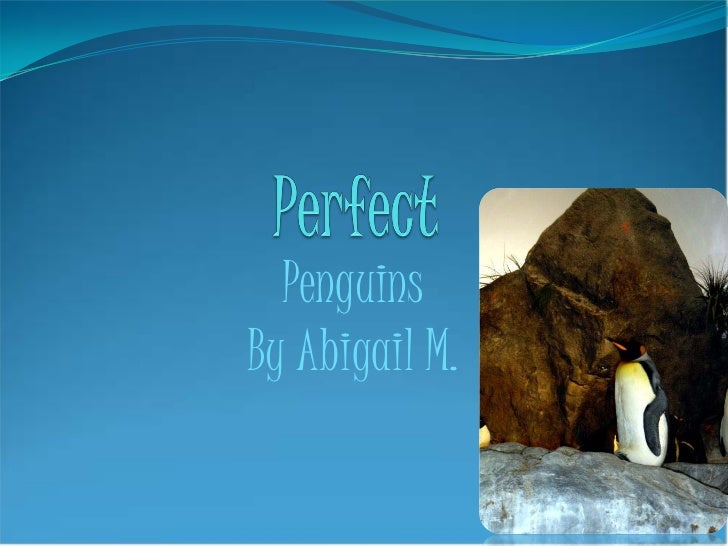 3A Penguin Research Slide 2