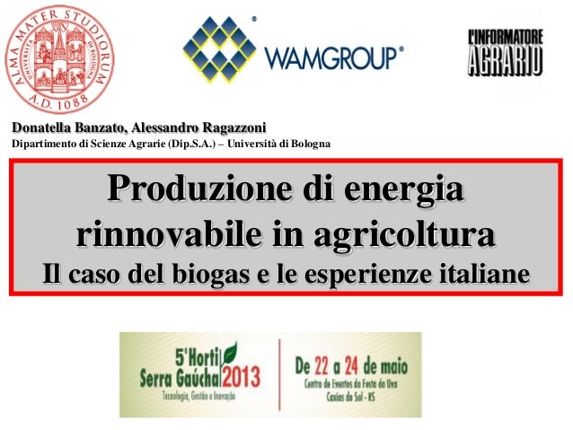 Dipartimento di Scienze Agrarie (Dip.S.A.) – Università di Bologna Donatella Banzato, Alessandro Ragazzoni Produzione di e...