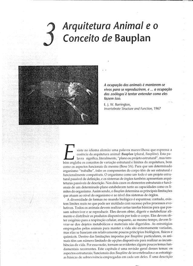 Arquitetura Anima¡ e o Conceito de Bauplan  A ocupação dos animais é manterem-se vivos para se reproduzírem,  e  a ocupaçã...