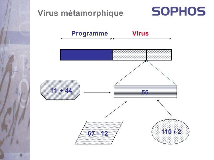 Virus métamorphique        Programme     Virus  11 + 44               55            67 - 12           110 / 2