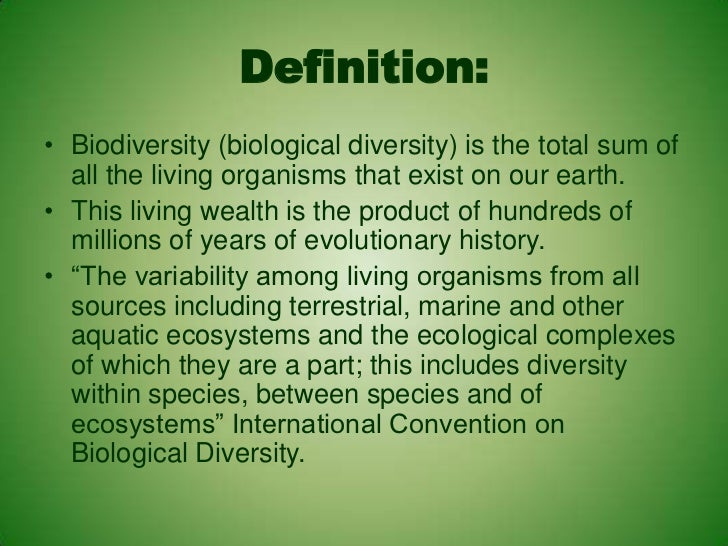 Definition Of Diversity | importance of diversity in ...