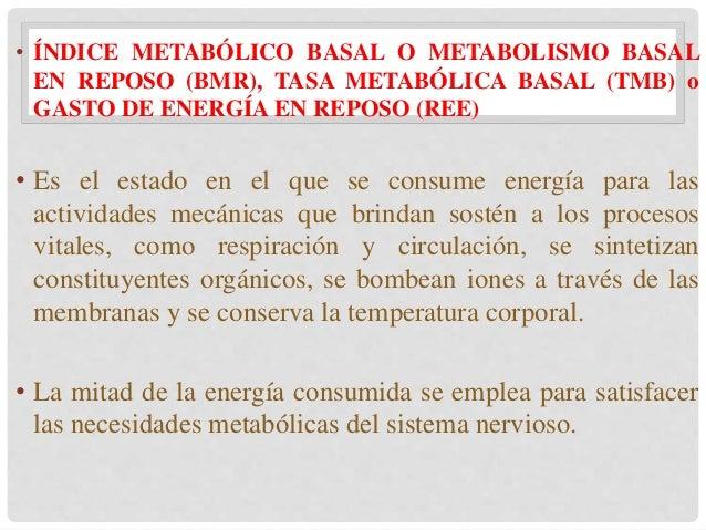 Energía y Nutrición