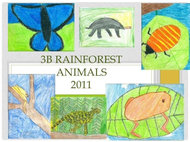 3B Rainforest Animals2011<br />