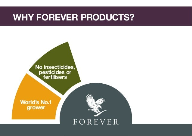 how to start forever living business