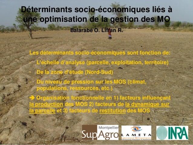Déterminants socio-économiques liés àune optimisation de la gestion des MO                    Balarabé O. Lifran R.  Les d...
