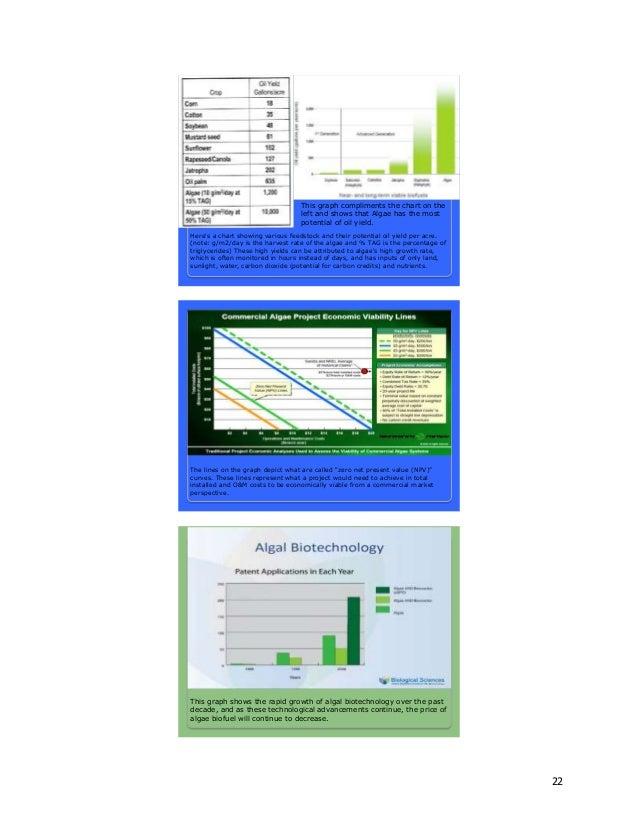 ALGAE Research Paper Final-1-1