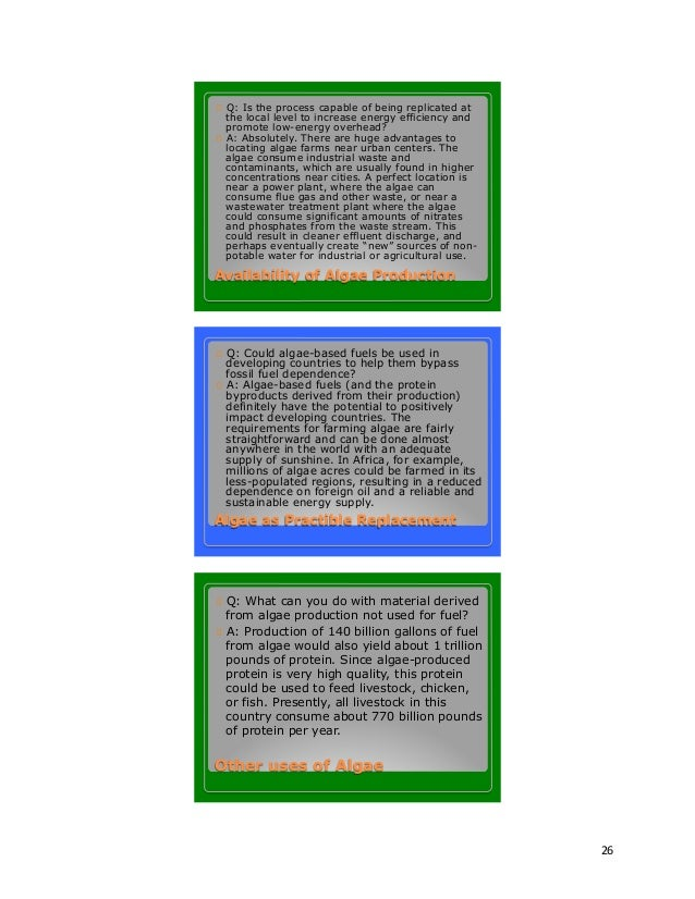 Algae Research Paper Pdf - image 3