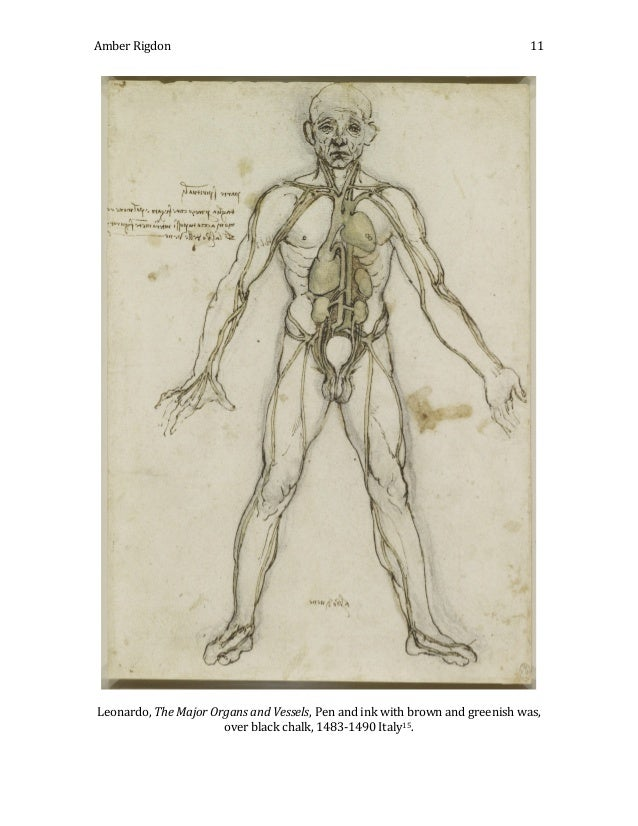 The Influence of Anatomy on Renaissance Art